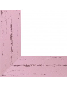 Rama foto Leon roz A4